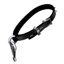 An example of leash handle