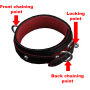 touchbound_system:classicleathercollar-sensing.png