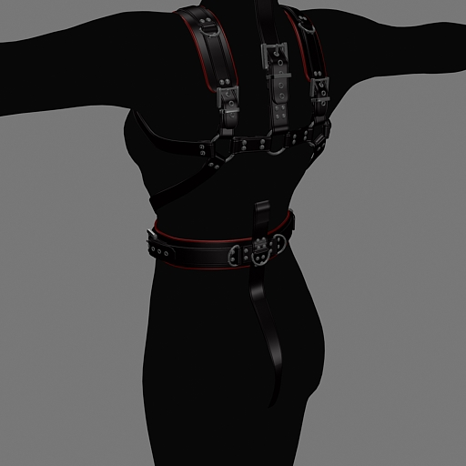 harness-back.jpg