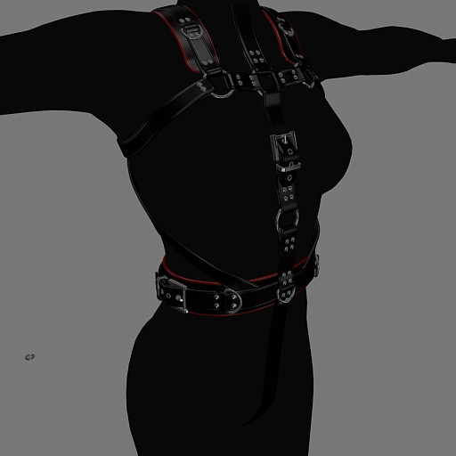 harness-front.jpg