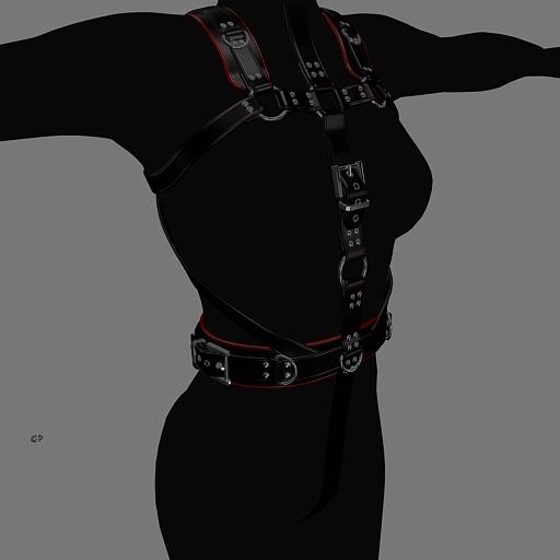 harness-front.jpg